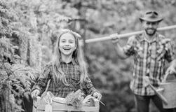 Rodzinne taty i c?rki ma?ej dziewczynki flancowania ro?liny Dzie? przy gospodarstwem rolnym Popularny w ogrodowej opiece sadz?c k zdjęcie royalty free