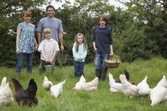 Rodzinne Żywieniowe karmazynki Na obszarze trawiastym zdjęcia stock