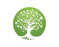 Rodzinnego drzewa loga szablon royalty ilustracja