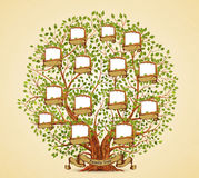 Rodzinnego drzewa szablonu rocznika wektor royalty ilustracja