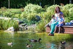 Rodzinnego szczęścia Szczęśliwa matka tenderly obejmuje jego dwa synów dzieci na trawie w wiosna dniu, ciepli uczucia, styl życia Zdjęcie Royalty Free