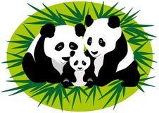 Rodzinni panda niedźwiedzie Zdjęcia Royalty Free