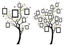 Rodzinny drzewo z fotografii ramami, wektor Zdjęcia Royalty Free