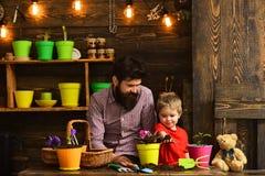 Rodzinny dzień charcica Kwiat opieki podlewanie Glebowi użyźniacze Brodata mężczyzny i chłopiec dziecka miłości natura Szczęśliwy obrazy royalty free
