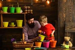 Rodzinny dzie? charcica Ojciec i syn Ojca dzie? Kwiat opieki podlewanie Glebowi u?y?niacze szcz??liwe ogrodniczki z wiosn? zdjęcie stock