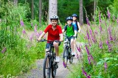 Rodzinny jechać na rowerze Zdjęcia Stock