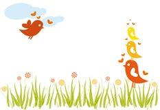 rodzinny lovebird Fotografia Stock