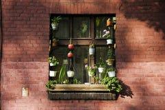 Rodzinny okno Obrazy Stock