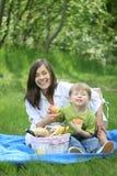rodzinny piknik Zdjęcia Royalty Free