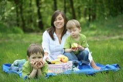rodzinny piknik fotografia royalty free