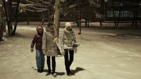 Rodzinny spacer w zima parku zbiory wideo