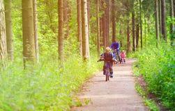 Rodzinny sport - ojcuje i dzieciaki jedzie rowery w lato lesie obraz stock