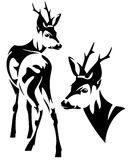 Roe deer vector Royalty Free Stock Photography