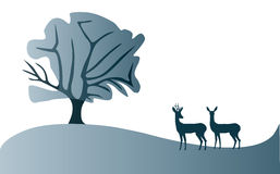Roe Deer landscape illustration Stock Photos