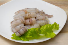 Roe shrimps Stock Image