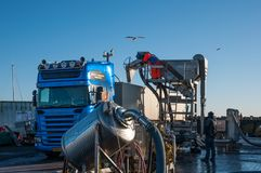 Herring being unloaded from boat to a truck. Roedvig Denmark - December 4. 2017: Herring being unloaded from boat to a truck in Town of Rodvig in Denmark stock photo