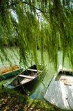 Roeiboot bij rivierkust Stock Fotografie