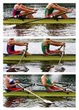 Roeiende atleten stock afbeeldingen