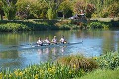 Roeiers op de Rivier van Avon, Christchurch. Stock Fotografie