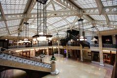 Roekenkolonie die binnenlands Chicago Illinois bouwt Royalty-vrije Stock Afbeeldingen