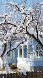 Roemeens huis in de winter Royalty-vrije Stock Foto's