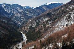 Roemeens landschap royalty-vrije stock afbeelding