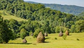 Roemeens Platteland met hooibergen stock afbeeldingen