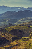 Roemeense landelijke scène Stock Foto