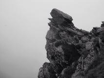 Roemeense rots - bewolkte wolf Royalty-vrije Stock Afbeelding