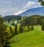 roemenië Roemeens landschap stock foto