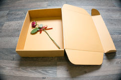 Roes in a box Stock Photography