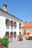 Roest, Meer Neusiedl, Burgenland, Oostenrijk Royalty-vrije Stock Fotografie
