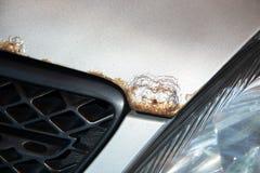 Roest op de bonnet van een zilveren auto stock afbeeldingen