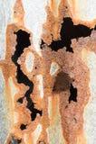 Roest op de verschillende achtergrond van het kleurenijzer stock fotografie