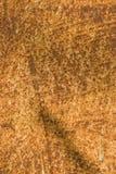 Roestig metaal, dat roesttexturen toont Stock Foto