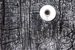 Roestige die spijker met een wasmachine in een muur met een gebarsten het waterdicht maken materiële textuur wordt gehamerd royalty-vrije stock afbeelding