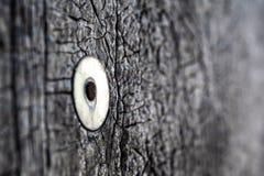 Roestige die spijker met een wasmachine in een muur met een gebarsten het waterdicht maken materiële textuur wordt gehamerd royalty-vrije stock foto's