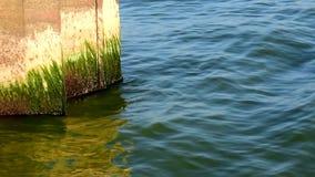 Roestige golfbreker Kalm water en Zonnig weer stock footage