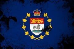 Roestige luitenant-gouverneur van Prins Edward Eilanden en grunge vlagillustratie vector illustratie