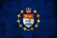 Roestige luitenant-gouverneur van Prins Edward Eilanden en grunge vlagillustratie stock illustratie