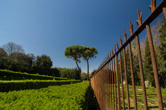 Roestige metaalomheining en in orde gemaakte struiken in Boboli-Tuinen, Florence Royalty-vrije Stock Foto's