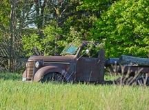 Roestige oude vrachtwagen met boom Royalty-vrije Stock Afbeelding