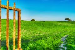 Roestige poort in een groene weide royalty-vrije stock foto