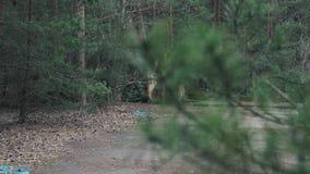 Roestige radioactieve metaalklauw met een radioactiviteitsteken naast het, schot van achter de pijnboom, in Tchernobyl, Pripyat stock videobeelden