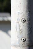 Roestige schroef op een witte pijp Royalty-vrije Stock Foto's