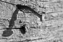 Roestige spijker op oud hout Royalty-vrije Stock Afbeeldingen