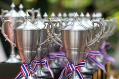 Roestvrije trofee Royalty-vrije Stock Foto