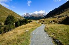 Rofen i AutumnOetztal, Tyrol (Österrike) Fotografering för Bildbyråer