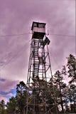 Rogacz Skacze światopogląd, Apache Sitgreaves las państwowy, Navajo okręg administracyjny, Arizona, Stany Zjednoczone fotografia royalty free