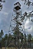 Rogacz Skacze światopogląd, Apache Sitgreaves las państwowy, Navajo okręg administracyjny, Arizona, Stany Zjednoczone obrazy stock
